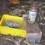 KiwiMana Water Feeder Side