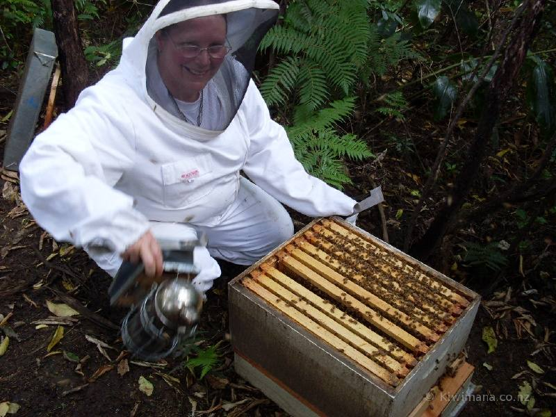 Beekeeping Suit Beekeeping Gear Essentials