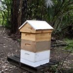 The Honey Supers away from brood boxes