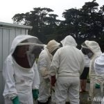 BeeKeepers gather