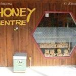 Visiting the Honey Centre Warkworth