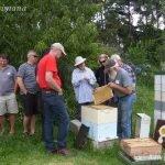 Dennis shows hive