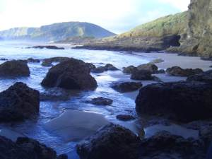 Bethells Beach, West Auckland