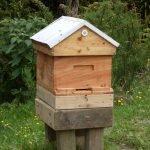 Kiwimana hive on hive stand