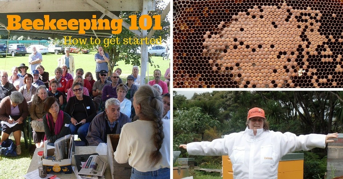 Beekeeping 101_FBIMAGE-min