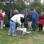 Hives Inspected