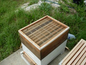 Put Queen Excluder On Top Old Hive