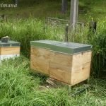 Hives that we sold