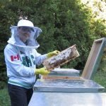 Beekeeping in Canada – We chat with Gabriel Petrut – KM020