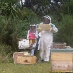New Beekeepers visit kiwimana