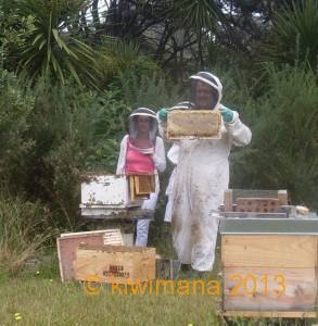 Nice Frame of Honey with some New Beekeepers