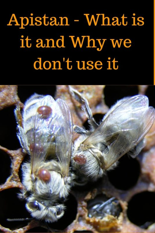 Apistan – What is it and Why we don't use it