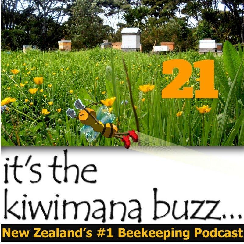 kiwimana_buzz_21