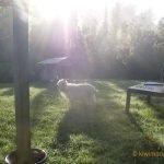 Louise enjoys the Sunrise