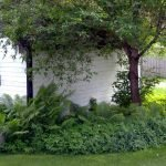 6 easy ways to add some much needed shade to your garden