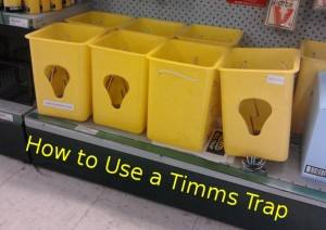 Timms Trap available at your local hardware store