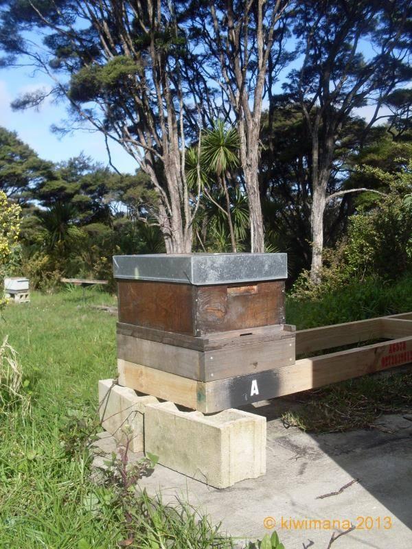 Bee Hive Stand Introducing The Kiwimana Hive Stand
