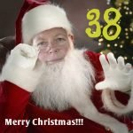 Merry Christmas Bees – KM038