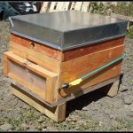 Robbing screen attached to hive box with bungy