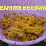 Cleaning Beeswax