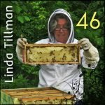 Beekeeper Linda – We chat with Linda Tillman