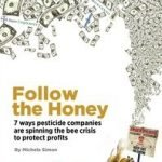Follow The Honey Report