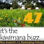 Follow the Honey – KM047
