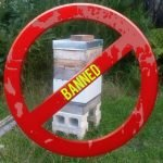 Urban Beekeeping Banned