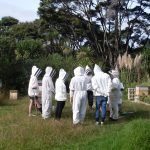 Beekeeping Course – Introduction to the World of Beekeeping