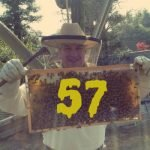 Beekeeping in Japan with James Rogers – KM057