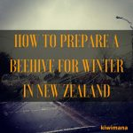 How to Prepare a Beehive for Winter In New Zealand