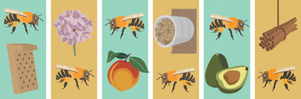 bee-friendly-garden-header