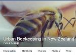 urban_Beekeeping