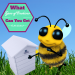 What types of Beehives can you get in New Zealand? Update 2016
