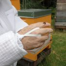 Ventilated Beekeeping Jacket Bee and Wrist Strap