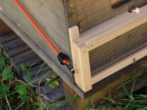 The bungy cord wraps around the hive box to keep the robbing screen in place
