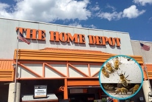 The World's Largest Garden Supply Store Is Phasing Out Bee-Killing Insecticides