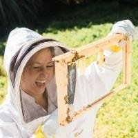 BEEKEEPING ADDICTION