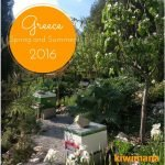 Beginner Beekeeper – Greece Spring and Summer 2016