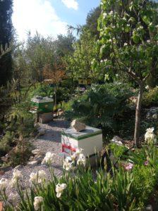 Greece Spring
