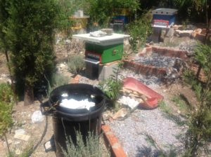 Greece Apiary now 3 hives