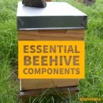 What are the 3 basics to start Beekeeping?  Part 2 – 5 Essential Beehive Components