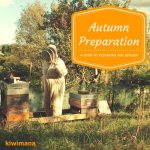 How to Prepare Your Bees for Autumn