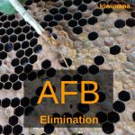 American Foulbrood Elimination – a Video Series by the AFB Management Agency