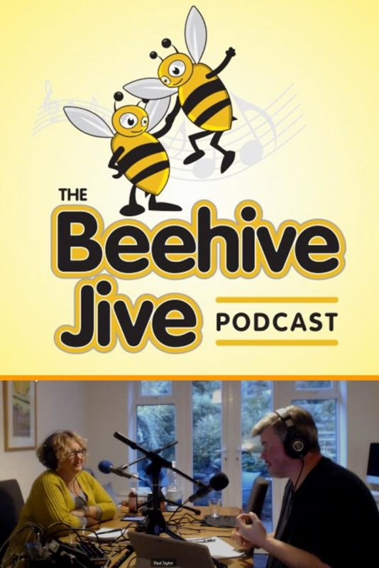 Understanding The Beehive Jive – KM134
