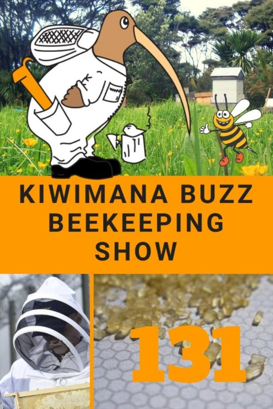Christmas Time in the Bee Yard – KM131