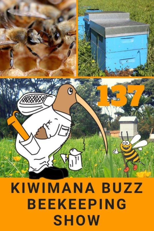 Manuka Honey Explosion – KM137