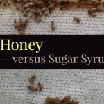 Honey Bee Honey versus Sugar Syrup