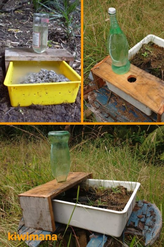 Creating a Water Source for Bees