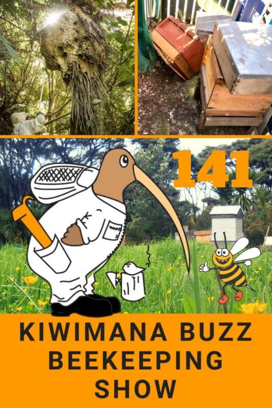 Oh Dear…Burglar covered in Bee Stings – KM141